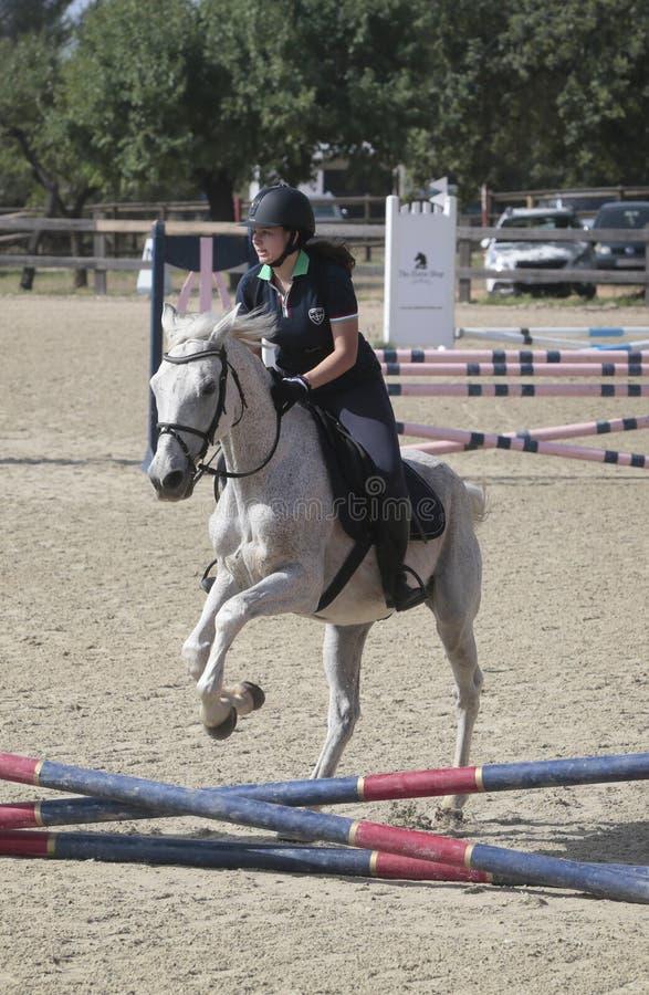 Competição local do cavalo dos cavaleiros novos em mallorca foto de stock royalty free