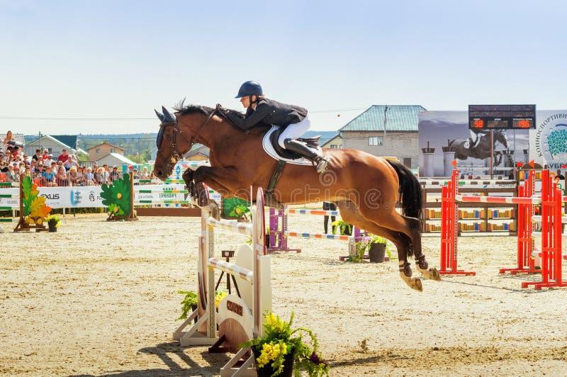 Competições de salto do cavalo internacional, Rússia, Ekaterinburg, 28 07 2018 imagens de stock