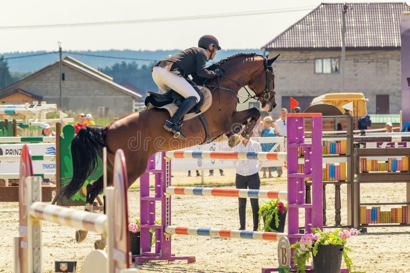 Competições de salto do cavalo internacional, Rússia, Ekaterinburg, 28 07 2018 foto de stock royalty free