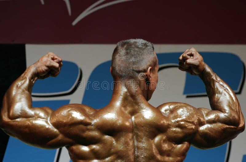 Competições do Bodybuilding fotografia de stock royalty free