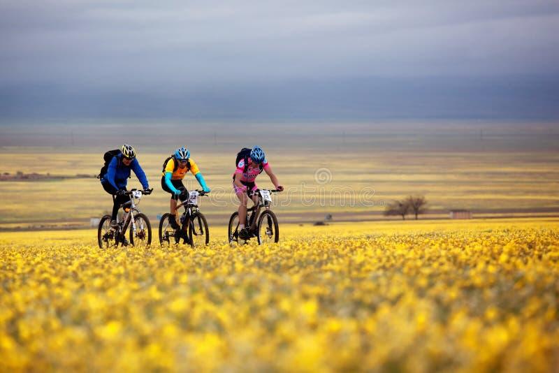 Competición de la bici de montaña de la aventura imagenes de archivo