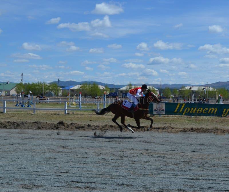 Competities paardruiters op de renbaan Concurrentie bij de renbaan in de stad van Tchita op 5 Mei, 2019 stock foto