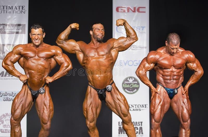 Competitive Bodybuilding Posedown. Muscular giants Chris Zaino Lightweight winner, Joe Thomas (Middleweight winner), and Josh Wade (Heavyweight winner) posedown royalty free stock photo
