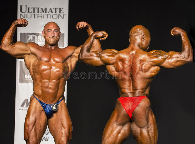 Competitive Middle-Aged Bodybuilders Flexing During Posedown. Muscular giants Robert Castarelli Heavyweight Class winner and Sheldon Hall (Lightweight Class stock photography