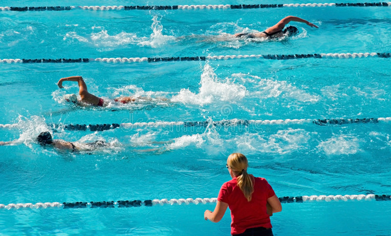 Competitive Swimming royalty free stock image