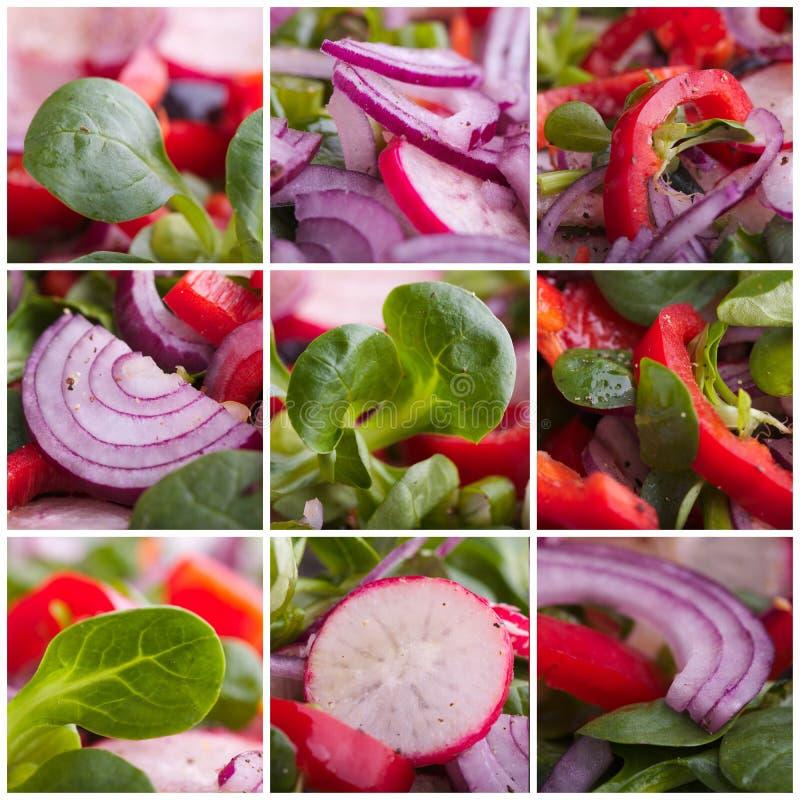 Compilação da salada fotos de stock royalty free