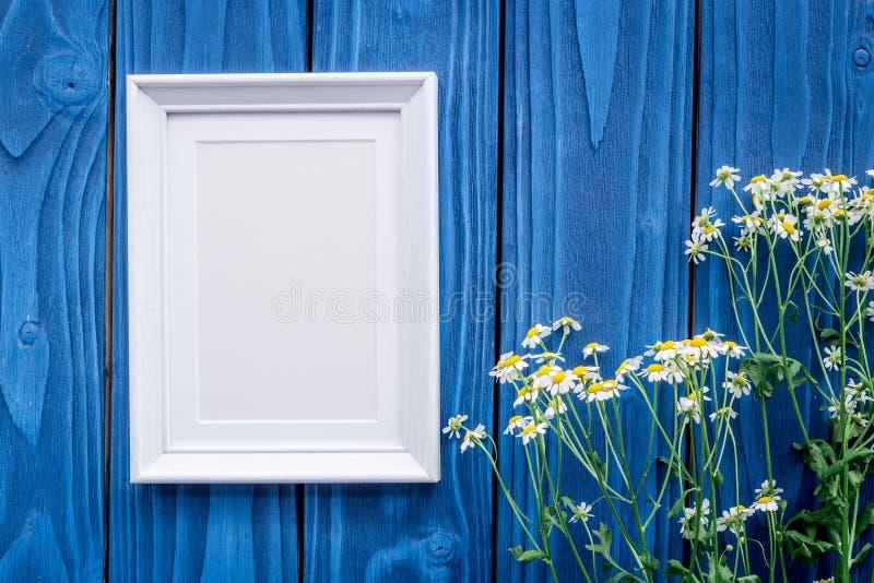 compisition del verano con las flores de la manzanilla y marco en mofa de madera azul de la opinión superior del fondo del escrit imagenes de archivo