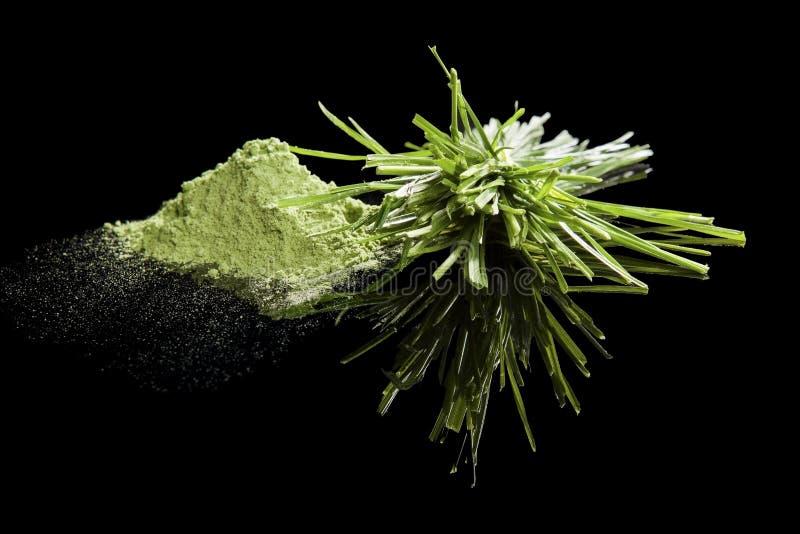 Compléments alimentaires verts. image libre de droits