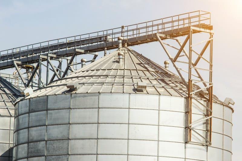 Complejo moderno de la granja para almacenar la violación del grano, de los cereales, del maíz y de semilla oleaginosa, agricultu foto de archivo libre de regalías