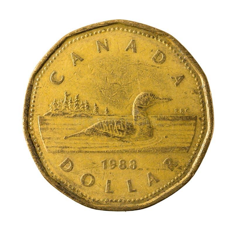 25 complemento della moneta 1988 del dollaro canadese isolato fotografia stock