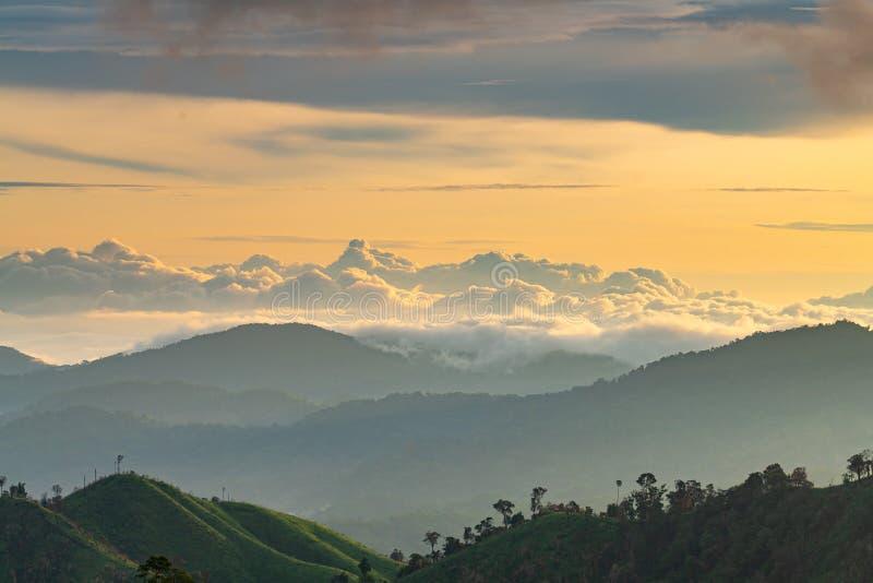 Complessità del paesaggio della montagna e diversità dell'albero della foresta con le belle nuvole basse sulla luce dorata di mat immagini stock