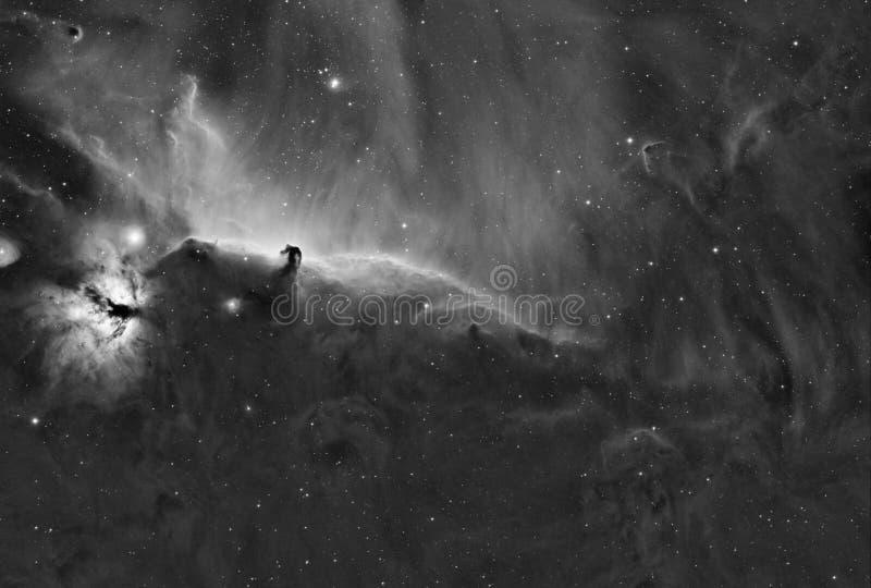 Complesso della nebulosa di Horsehead - Widefield fotografia stock