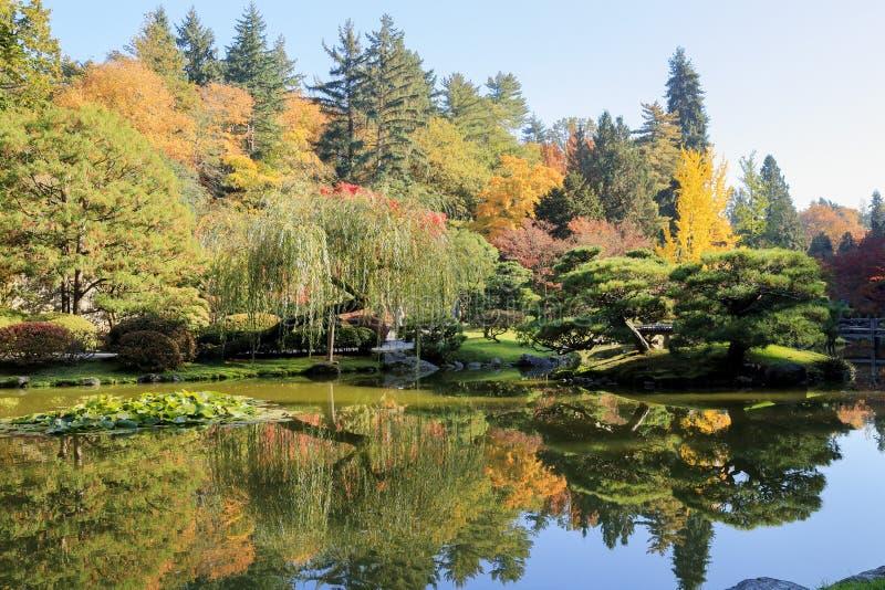 Completamente de cores bonitas da queda no jardim japonês, Seattle Washington imagem de stock royalty free