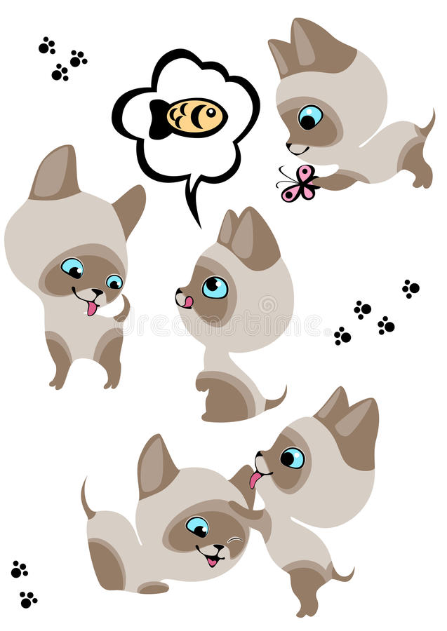 Download The Complete Set Of Cheerful Siamese Kittens Stock Vector - Image: 18497511