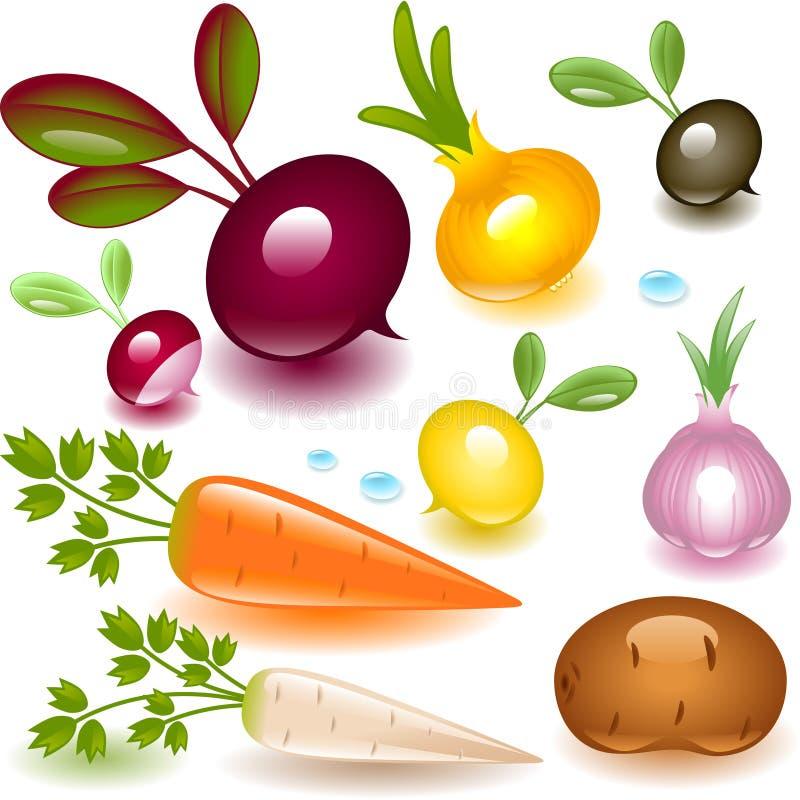 Complete set vegetable. root. stock illustration