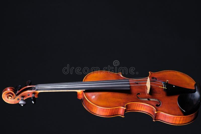 Completi la viola del violino sul nero fotografia stock