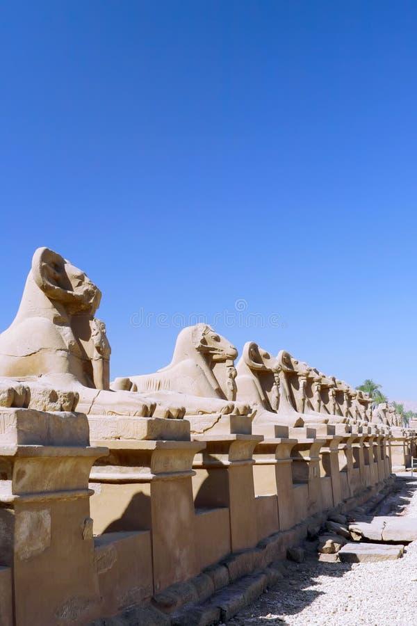 Complexe de Tempel van Karnak, Luxor, Egypte. stock foto