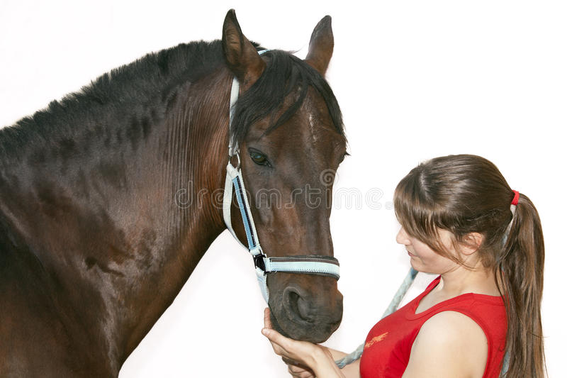 Download Complicity stock image. Image of equine, mane, horse - 26011083