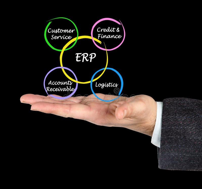 Componenten van ERP stock fotografie