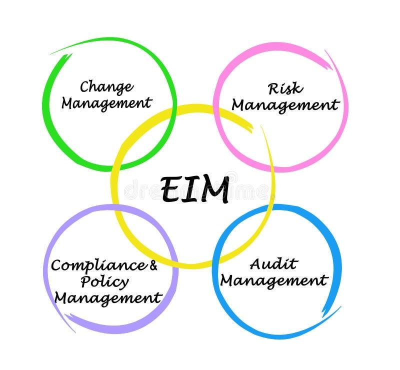 Componentes da auditoria de EIM ilustração do vetor
