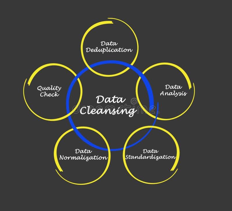 Componentes da limpeza dos dados ilustração do vetor