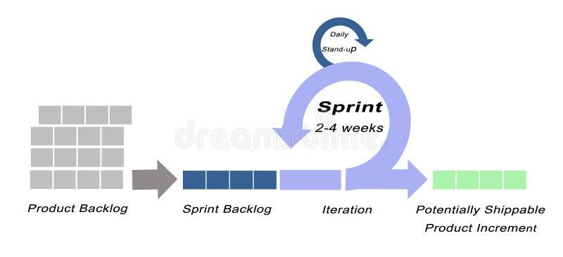 Componentes do modelo do SCRUM ilustração do vetor