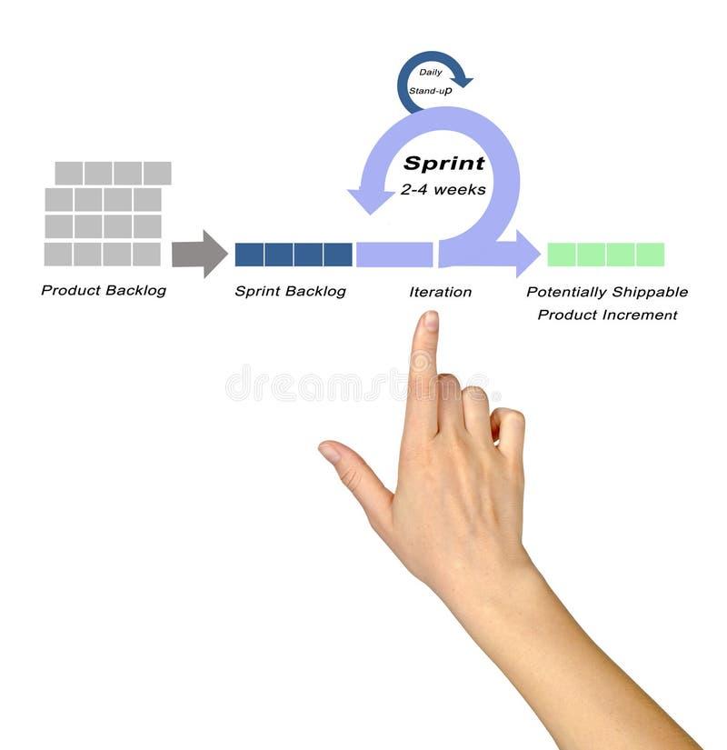 Componentes do modelo do SCRUM imagens de stock royalty free