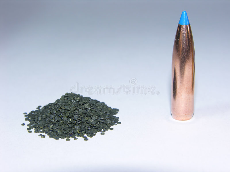 Download Componenti Rotonde Del Fucile Fotografia Stock - Immagine di esplosivo, cartuccia: 202834