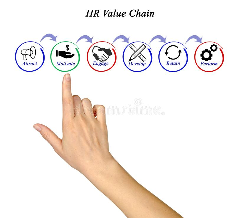 HR Value Chain royalty free stock photo
