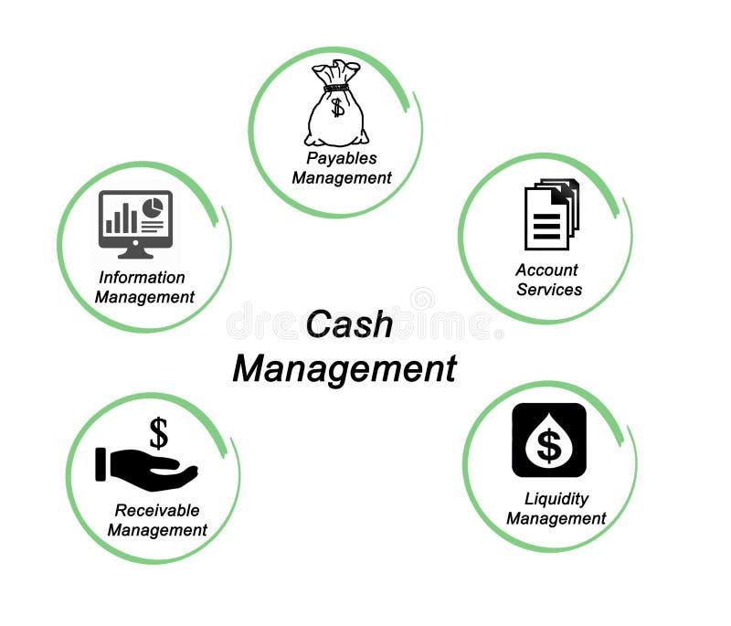 Composants de gestion de trésorerie illustration stock