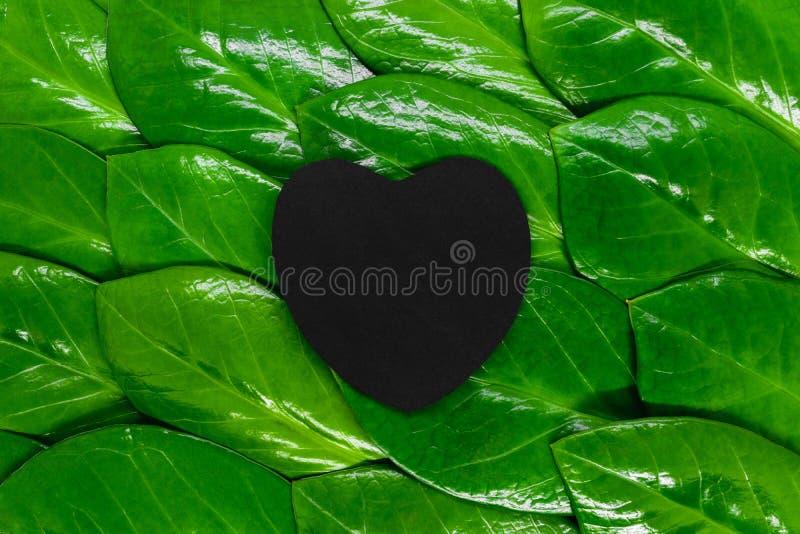Composição abstrata das folhas da gema de Zanzibar e do coração de papel preto foto de stock royalty free