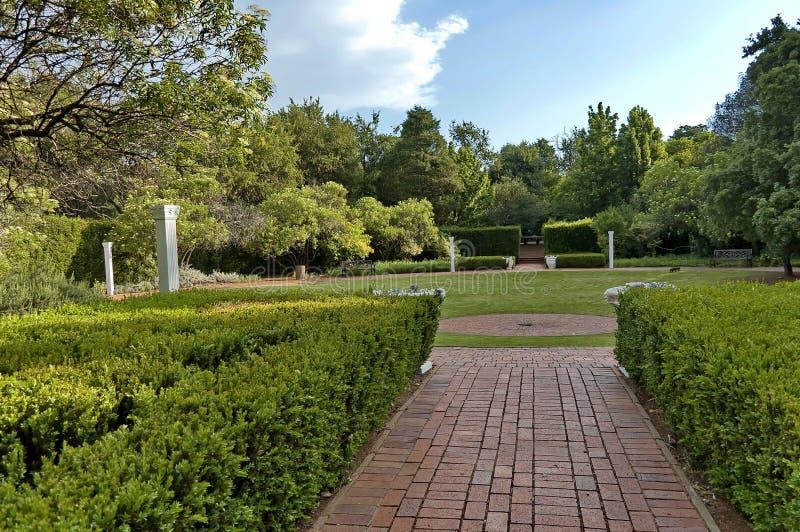 Composição bonita no jardim botânico foto de stock royalty free