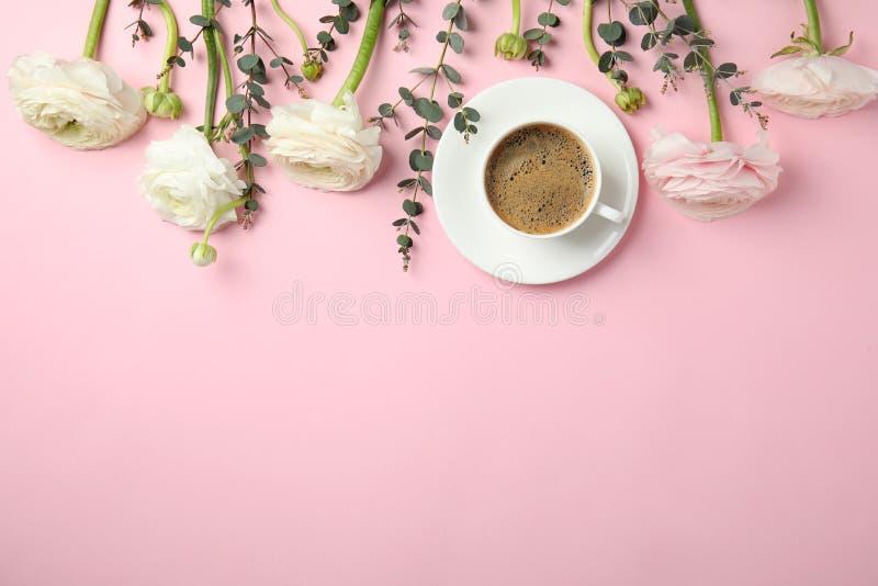 Composição colocada lisa com as flores e a xícara de café do ranúnculo da mola no fundo da cor fotos de stock royalty free