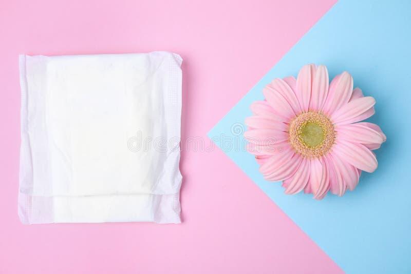 Composição colocada lisa com a flor menstrual da almofada e do gerbera Cuidado Gynecological imagem de stock