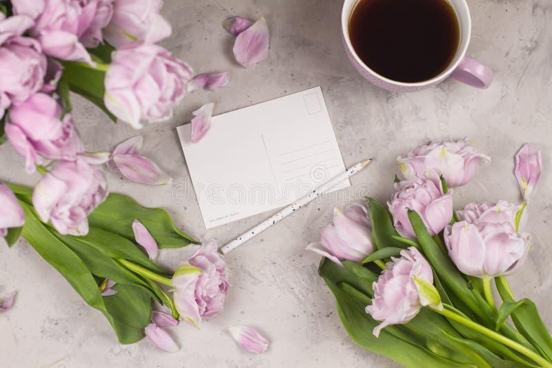 Composição colocada lisa romântica trocista acima do cartão com as flores das tulipas e o copo dobro violetas do coffe ou do chá  fotos de stock royalty free