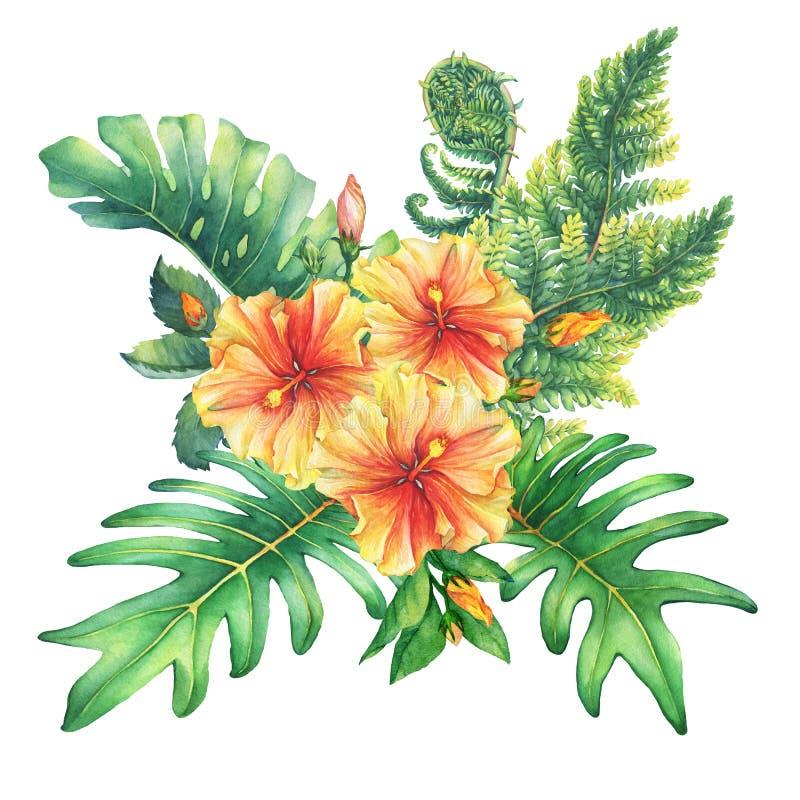 Composição com as flores amarelo-vermelhas do hibiscus e as plantas tropicais ilustração do vetor