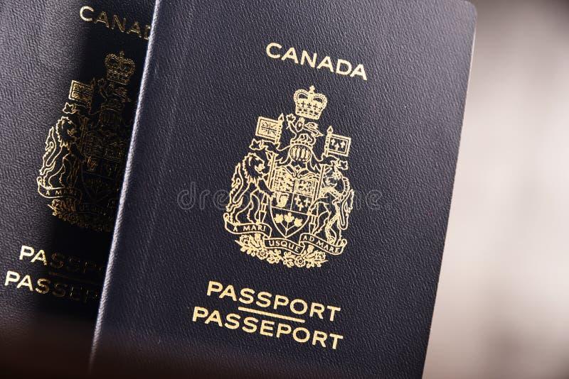 Composição com os dois passaportes canadenses imagem de stock royalty free