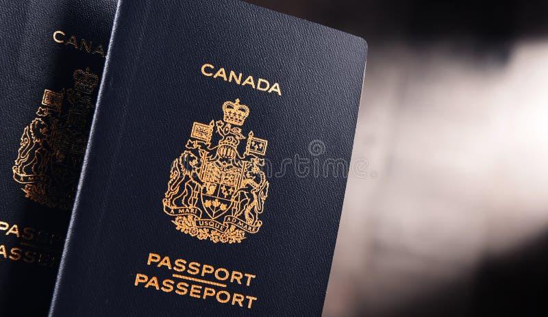 Composição com os dois passaportes canadenses foto de stock royalty free