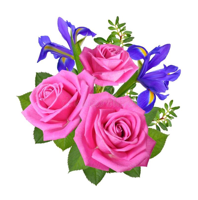 Composição com rosas e a íris cor-de-rosa Isolado no backgrou branco imagem de stock royalty free