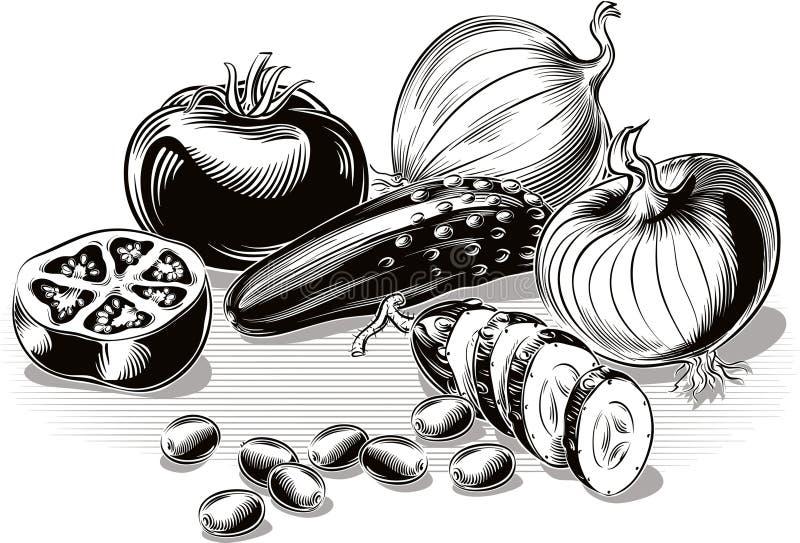Composição com tomates, cebolas, pepino, azeitonas verdes ilustração royalty free