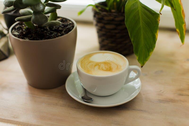 Composição com xícara de café, plantas carnudas e cacto em uns potenciômetros concretos Interior escandinavo imagens de stock