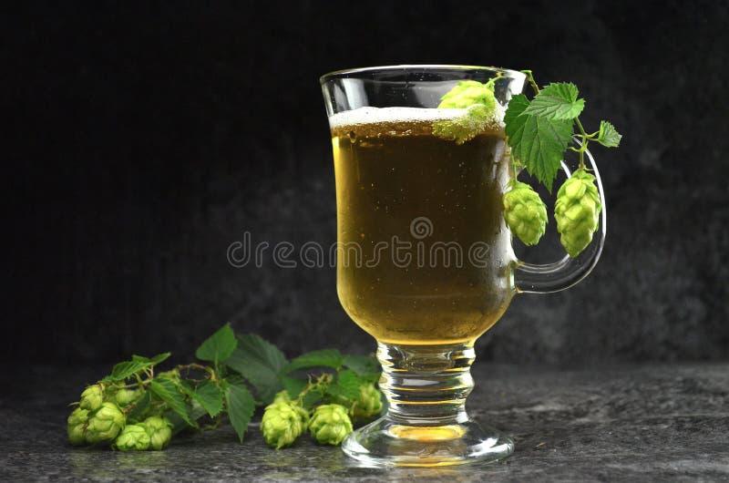 Composição da cerveja e do lúpulo fotos de stock