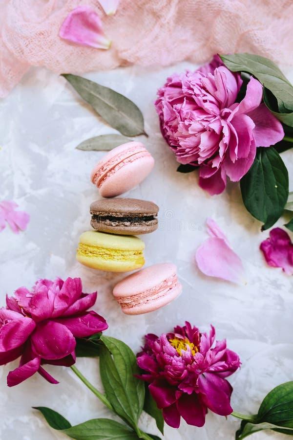 Composição da mola flatlay: os bolinhos de amêndoa coloridos com as peônias roxas e cor-de-rosa, verde saem em um fundo do betão  foto de stock royalty free