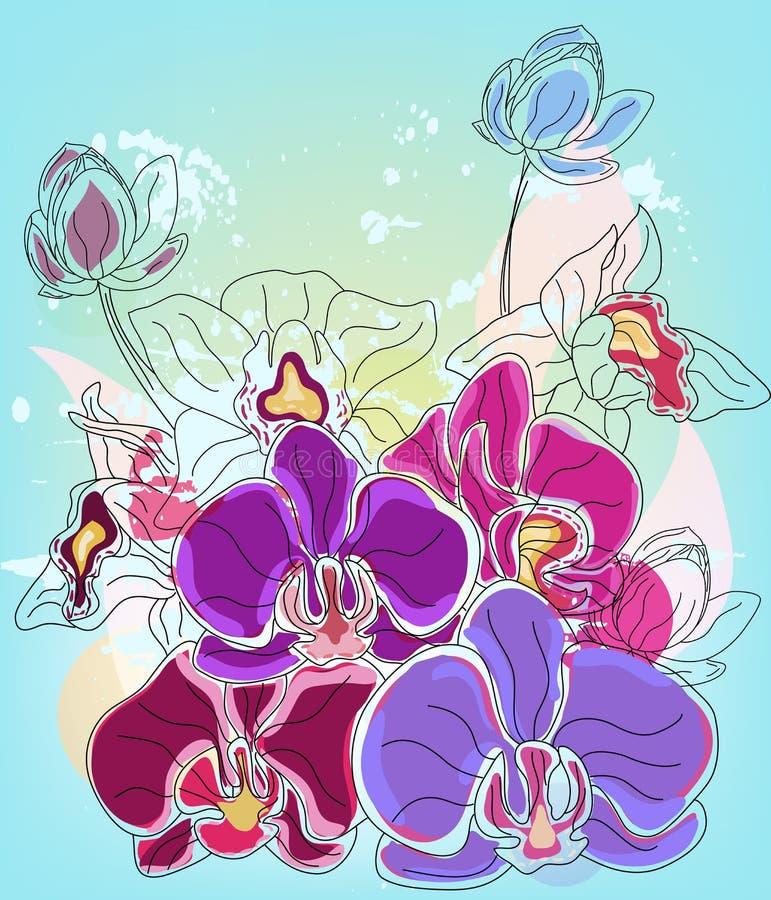 Composição da orquídea ilustração stock