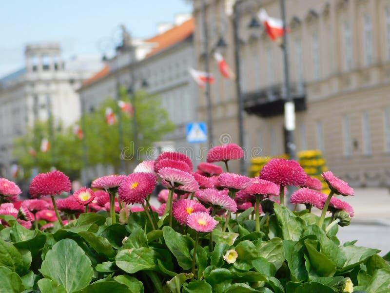 Composição da rua de Varsóvia imagens de stock