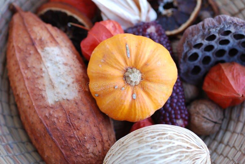 Composição das coisas do outono imagens de stock