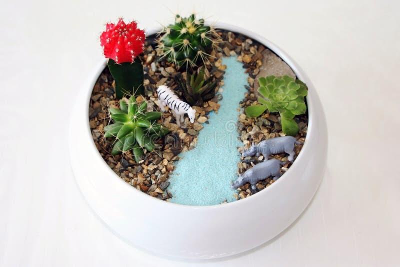 Composição das plantas carnudas com animais do brinquedo e a areia artificial fotografia de stock royalty free
