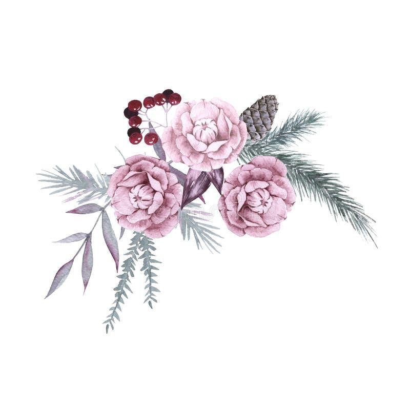 Composição das plantas e das flores Siberian Isolado no fundo branco ilustração do vetor