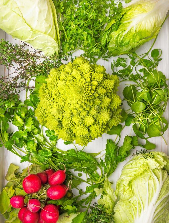 A composição das variedades de couve, ervas verdes mistura e rabanetes imagens de stock