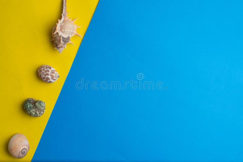 Composição de escudos exóticos do mar em um amarelo e em um fundo azul Conceito do ver?o Vista superior imagens de stock royalty free